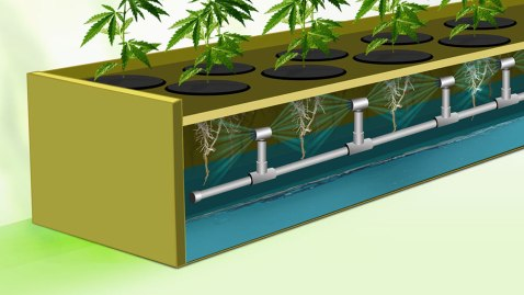 aeroponics-illustration-02